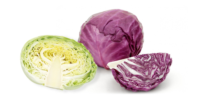 S_cabbage_img