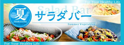 Salad bar of 2018 summer